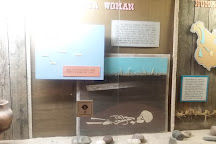 Otter Tail County Museum, Fergus Falls, United States