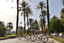 Ride A Bike Mallorca, Palma de Mallorca, Spain