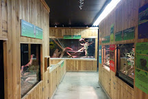 Little Ray's Reptile Zoo and Nature Centre- Hamilton, Hamilton, Canada
