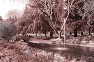 Mirador Parque da Alameda