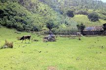 Celaque National Park, Gracias, Honduras