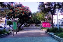 Paseo de las Artes Chapultepec, Guadalajara, Mexico