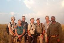 Kilimanjaro Safari Experience, Moshi, Tanzania