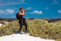 Photo Safari Lanzarote, Lanzarote, Spain