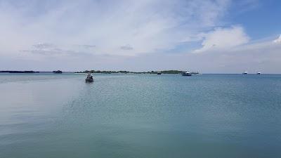 Sea outskirts Apexindo