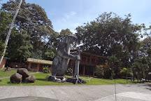 Sloth Sanctuary of Costa Rica, Cahuita, Costa Rica