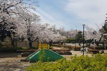 Kashiwa Park, Kashiwa, Japan