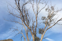 Bellevue Hill Reserve and Lookout, Cowra, Australia