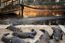 Everglades Wonder Gardens, Bonita Springs, United States