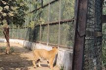 Sarthana Nature Park, Surat, India