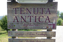 Tenuta Antica, Cessole, Italy