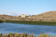 Laguna Nimez Reserva Natural Municipal, El Calafate, Argentina