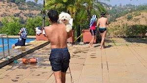 Manas Resort With petting Zoo