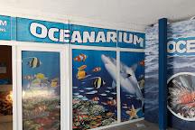 Oceanarium, Kolobrzeg, Poland