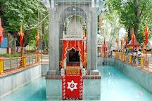 Sanaya Tour and Travel, Katra, India
