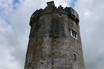 Newtown Castle, Ballyvaughan, Ireland