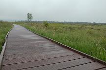 Flanders Moss National Nature Reserve, Kippen, United Kingdom