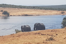 Dinokeng Game Reserve, Hammanskraal, South Africa