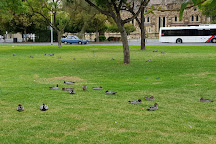 Victoria Square/ Tarntanyangga, Adelaide, Australia