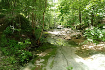 Ozark-St. Francis National Forests, Russellville, United States