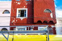 Tejon Rojo, Merida, Mexico