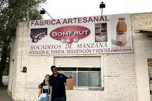 Bomfrut, General Roca, Argentina