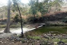 Kheoni Wildlife Sanctuary, Dewas, India