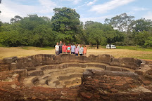Lotus Pond, Polonnaruwa, Sri Lanka