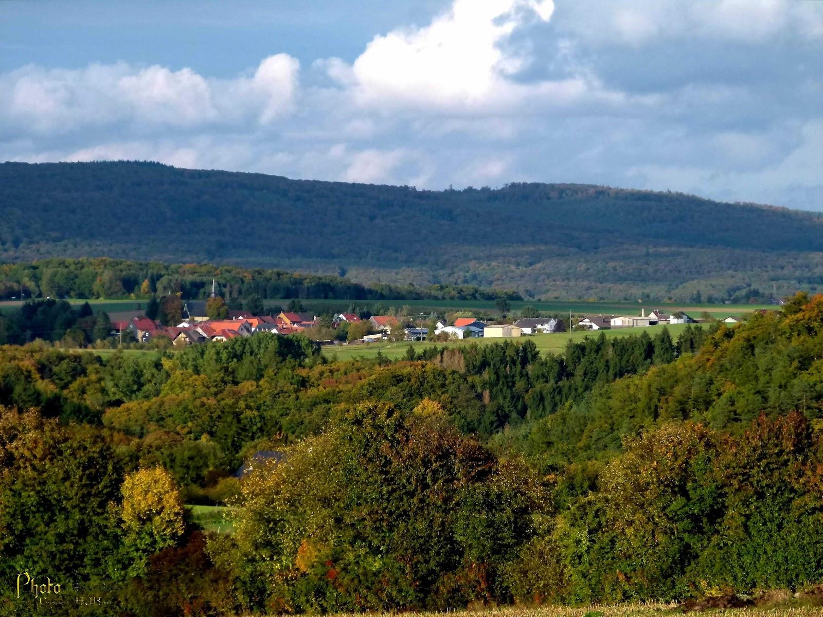 Allenfeld