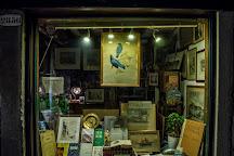 Segni nel Tempo antiquarian bookshop, Venice, Italy