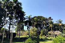 De Coconi Botanical Garden, Ouangani, Mayotte