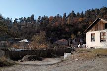 Gogia Fortres, Borjomi, Georgia