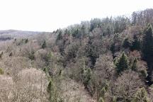 Conkles Hollow State Nature Preserve, Rockbridge, United States
