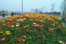 Happy Valley of Chengdu, Chengdu, China
