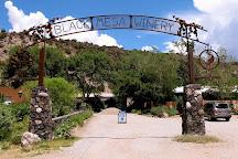 Black Mesa Winery, Taos, United States