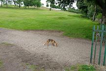 Murrayfield Golf Club, Edinburgh, United Kingdom