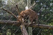 Mesker Park Zoo & Botanic Garden, Evansville, United States