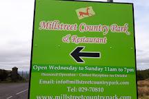 Millstreet Country Park, Millstreet, Ireland