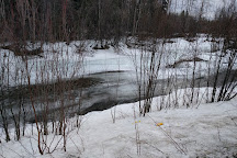 Chena River State Recreation Area, Fairbanks, United States