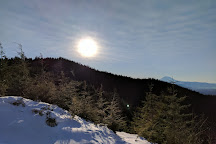 Tiger Mountain, Issaquah, United States