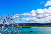 Galapagos Best Option, Puerto Ayora, Ecuador