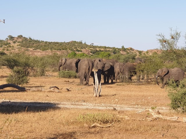 Northern Tuli Game Reserve (Private)