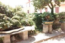 Musee de Bonsai, Biot, France