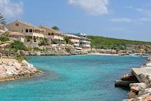 Dolphin Academy Curacao, Willemstad, Curacao