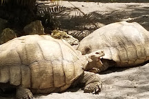 Billie Swamp Safari, Clewiston, United States