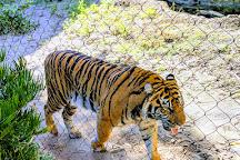 Jacksonville Zoo & Gardens, Jacksonville, United States