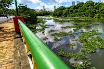 Parque da Jaqueira, Recife, Brazil