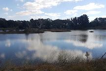 Putta Bucca Wetlands, Mudgee, Australia
