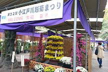 Kitain, Kawagoe, Japan
