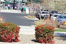 Sloan Park, Mesa, United States